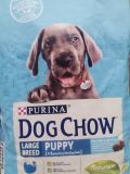 Purina (Пурина) Dog Chow (Дог Чау) Puppy LARGE BREED 14 кг